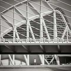 Pattern Model (PetterPhoto) Tags: bridge blackandwhite bw valencia monochrome architecture spain construction model pattern noiretblanc ciudaddelasartesylasciencias petterphoto pettersandell