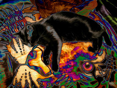 Midnight Painted (fishmonger45) Tags: cats photoshop greatphotographers