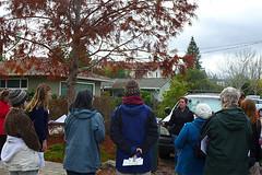 FY 16 Tree Walk - Barron Park (CANOPY PHOTOS) Tags: park trees tree community neighborhood paloalto barron dawnredwood treewalk elisewillis