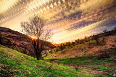 30 Minutes (Mahmood Alsawaf) Tags: winter sunset sky sun motion mountains tree green nature clouds canon photography landscapes flickr time cloudy fineart iraq stack 20mm              5dm3 mahmoodalsawaf