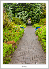 Tresco Abbey Gardens (flatfoot471) Tags: summer england holiday nature landscape cornwall unitedkingdom normal tresco islesofscilly abbeygardens 2015