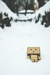 Winter (SEUNG HEON) Tags: winter white snow canon 1755 yotsubato danbo 70d fiqure