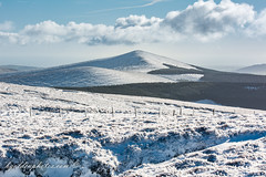 Croaghanmoira viewed from Carrawaystick in the Snow (bob golden) Tags: ireland winter irish snow landscape outdoors countryside sunny glendalough wicklow carrawaystick croaghanmoira drumgoff