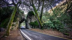 Yosemite Valley National Park - California, United States - Landscape photography