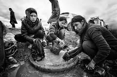 Idomeni Camp (Melissa Favaron) Tags: europa border confine police greece macedonia grecia afghan crisis germania syrian polizia noborder profughi volontari fyrom crisi blocchi frontiera volonteers campoprofughi refugeescamp siriani camporifugiati idomeni lesvo idomenicamp