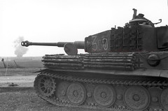 Original combat photo of a Tiger Tank from 507th Heavy Tank Battalion, 1944