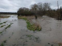 Burst Banks (sgreen757) Tags: winter water river high stream flood little burst avon banks 2016 charfield huntingford