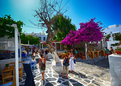 A Day Out in Mykonos, Greece (` Toshio ') Tags: city trees girls people square greek cafe europe european restaurants tourists cobblestone greece backpacking europeanunion mykonos toshio greekisland mykonostown xe2 fujixe2