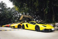 Lamborghini Gathering in Guangzhou (The17th_XY) Tags: guangzhou china colorful huracan lamborghini gallardo lp5604 aventador lp7004 lp7204 lp6104