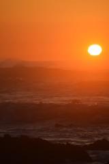 Golden Hour (Bri3M) Tags: life california sunset beach nature beauty birds loving golden living monterey skies westcoast