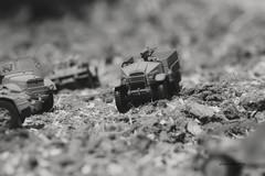 Camionetta Morris - Uk 1941 (lumun2012) Tags: bw macro monocromo war military models biancoenero lucio monocrome veicles mundula