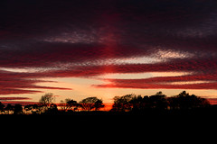 (Chris B70D) Tags: chris trees light sunset red sky orange sun beautiful silhouette vertical set ferry clouds canon scotland spring ray colours purple dundee horizon formation treeline broughty sunray 70d berridge