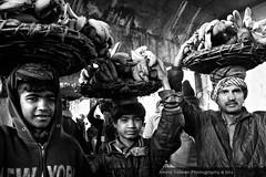 Market (Amna Yaseen) Tags: plaza pakistan blackandwhite monochrome kids canon documentary lahore 2016 fruitandvegetablemarket
