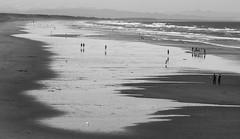 (felix.h) Tags: newzealand christchurch summer people blackandwhite bw beach canon eos coast blackwhite pacific shoreline canterbury pacificocean shore coastline newbrighton newbrightonbeach 400d canoneos400d digitalrebelxti eoskissdigitalx alongshore tokina5013528 tokina50135mm28
