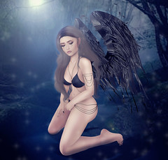 ::MD:: Pose - Fallen Angel (melissa Hawks) Tags: angel pose md fallen