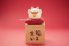 handmade lucky cat ,handmade clay dolls, handmade home decor (charles fukuyama) Tags: cute cat japanese kitten decoration kitty artdoll luckycat handmadedoll woodenbox japanstyle claydoll sculpturedoll  kikuike