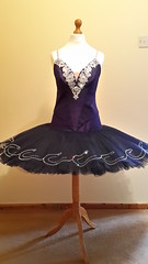 Navy classical ballet tutu (mongyandweasel) Tags: ballet net silver dance costume crystals navy silk classical applique tutu
