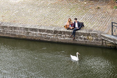 rverie - dreaming (jean-lino) Tags: street people swan couple dreaming cygne urbain rverie erdre cup2zxjpzq