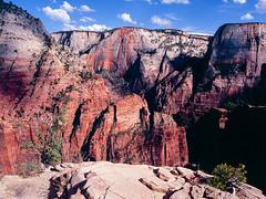 At the edge of the canyon (JaZ99wro) Tags: usa film analog 645 zion e6 e100vs mamiya645protl tetenal3bathkit f0305 exif4film opticfilm120