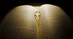 Livro (Tiago Lourenco) Tags: livro sombras aliana anel leitura