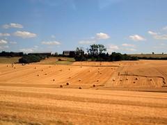 Harvest 2015 054 (saxonfenken) Tags: france field farm harvest bales 54 pregamewinner austria2015 54austria