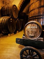 The cellar, smell of a good Marsala (Veronicamente) Tags: cantina cellar sicilia botti marsala florio