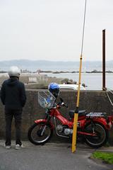 20160424-DSC_8897.jpg (d3_plus) Tags: sea sky fish beach nature japan nikon scenery diving daily snorkeling  28105mmf3545d nikkor  kanagawa hayama     dailyphoto  apnea  thesedays  28105    28105mm skindiving  zoomlense     28105mmf3545 d700 281053545 nikond700 aiafzoomnikkor28105mmf3545d 28105mmf3545af   aiafnikkor28105mmf3545d