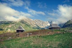 shepherd's hut in Gsienicowa Valley, Tatra Mountains / Poland (stoplamek) Tags: poland polska tatry shepherdshut szaas tatramountains dolinagsienicowa gsienicowavalley szaaspasterski