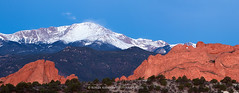 Snow blowing on Pikes Peak from the Garden of the Gods Panorama (RondaKimbrow) Tags: morning blue panorama mountain landscape photography dawn colorado pano scenic noone gardenofthegods blowing snowcapped sediment photograph coloradosprings summit redrocks bluehour geology pikespeak rockformations kissingcamels