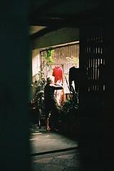 CNV000015 ( ) Tags: film 50mm nikon taiwan f100 snap fujifilm nikkor 2016 xtra400