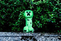 ... (azyef94) Tags: toys creeper plsch toyphotography mojang minecraft