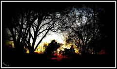 Sunset at the park (DustinPittman1) Tags: dustin