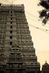 2599: Annamalaiyar Temple, Tiruvannamalai (Atul Sabnis) Tags: temple tiruvannamalai annamalaiyar