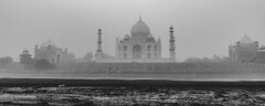 Taj (ayashok photography) Tags: bw india monument asian blackwhite nikon asia indian taj tajmahal agra desi bnw bharat bharath desh barat cwc uttarpradesh yamuna barath mugal 2013 shajahan ayashok nikond700 tokina1735mm chennaiweekendclickers ayashokphotography mehtabbaghgarden