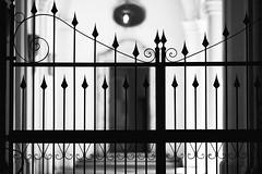 04 (Alessandro Gaziano) Tags: blackandwhite rome roma blackwhite foto bn fotografia palazzo biancoenero pillole particolari borromini blackwhiteaward alessandrogaziano