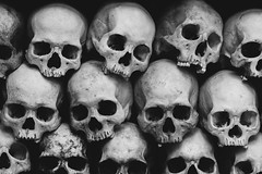Victims of the Cambodian Genocide (davidkim336) Tags: history asian skulls skeleton rouge death skull holocaust memorial war asia cambodia khmer killing mort rip pot tragedy memory bones murder catacombs genocide victims killingfields pol