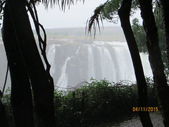 Zimbabwe (337) (Absolute Africa 17/09/2015 Overlanding Tour) Tags: africa2015