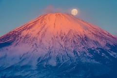 Beni-Fuji and the moon (shinichiro*) Tags: winter moon december fuji jp  crazyshin  2015     abigfave afsnikkor2470mmf28ged  nikohd4s 20151227ds22255 23905848802 201602gettyuploadesp