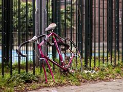 Inge Hoogendoorn (ingehoogendoorn) Tags: bike sad bikes vandalism parked stranded fietsen fiets sadbikes lostbikes bikeparking vandalisme racefiets bikewreck dutchbike missingwheel dutchbikes strandedbike