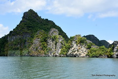 D72_7517 (Tom Ballard Photography) Tags: vietnam halongbay tourboats bayclub 20151118