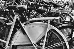 Bicycles (Matt H. Imaging) Tags: blackandwhite bw sony highcontrast bicycles slt a55 sal1855 slta55v ©matthimaging
