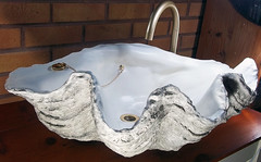 Grey Giant Clam Shell SINK 6 (LittleGems AR) Tags: ocean sea sculpture sun beach home statue giant bathroom shower aquarium soap sand bath sink natural contemporary unique decorative shell craft style toilet towel clam basin special shampoo taps wash ornament gift seashell pearl nautical reef decor spa luxury opulent fossils oneoff clamshell mollusks cloakroom bespoke tridacna sculpt crafted gigas facetowel