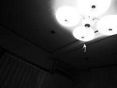 Fluorescent lamp (matsuyuki) Tags: fluorescentlight fluorescentlamp