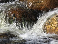 Splashing Water In Sabino Canyon-2 (Chic Bee) Tags: arizona agua rocks tucson stones bubbles boulders foam naturewalk corriente cascada catalinamountains froth rushingwater sabinocanyon splashingwater southwesternusa singingwater pequeñacorrientedeagua