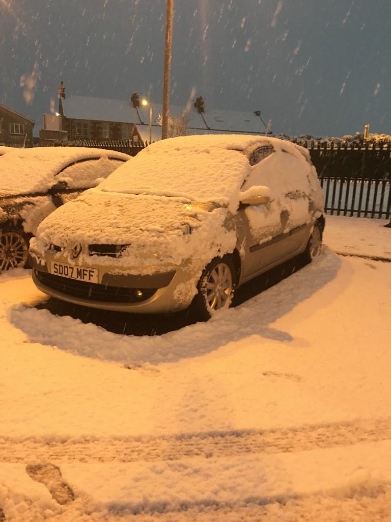 008 - snowy surprise