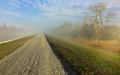 Fog on the Mississippi River Levee (Don Pirolo) Tags: fog river mississippi us louisiana unitedstates mississippiriver levee bellechasse