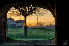 (josip ivanusec) Tags: old roof sunset tree brick lamp grass birds bench woods outdoor osijek croatia