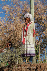 thiopienne a Lalibela (jmboyer) Tags: voyage africa travel canon photography photo yahoo flickr photos retrato picture viajes lonely lonelyplanet ethiopia canoneos gettyimages nationalgeographic afrique eastafrica ethiopie googleimage go googlephotos etiopija impressedbeauty ethiopianwoman photoflickr afriquedelest photosflickr canonfrance photosyahoo imagesgoogle photogo nationalgeographie jmboyer photosgoogleearth eth5329