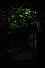 Birdcage Walk (MJA1975) Tags: light nikon shadows iso d200