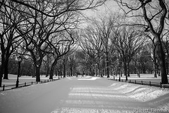 The Mall - Central Park (Jfienman) Tags: nyc white newyork black canon frozen centralpark wilderness 2470mm markiii